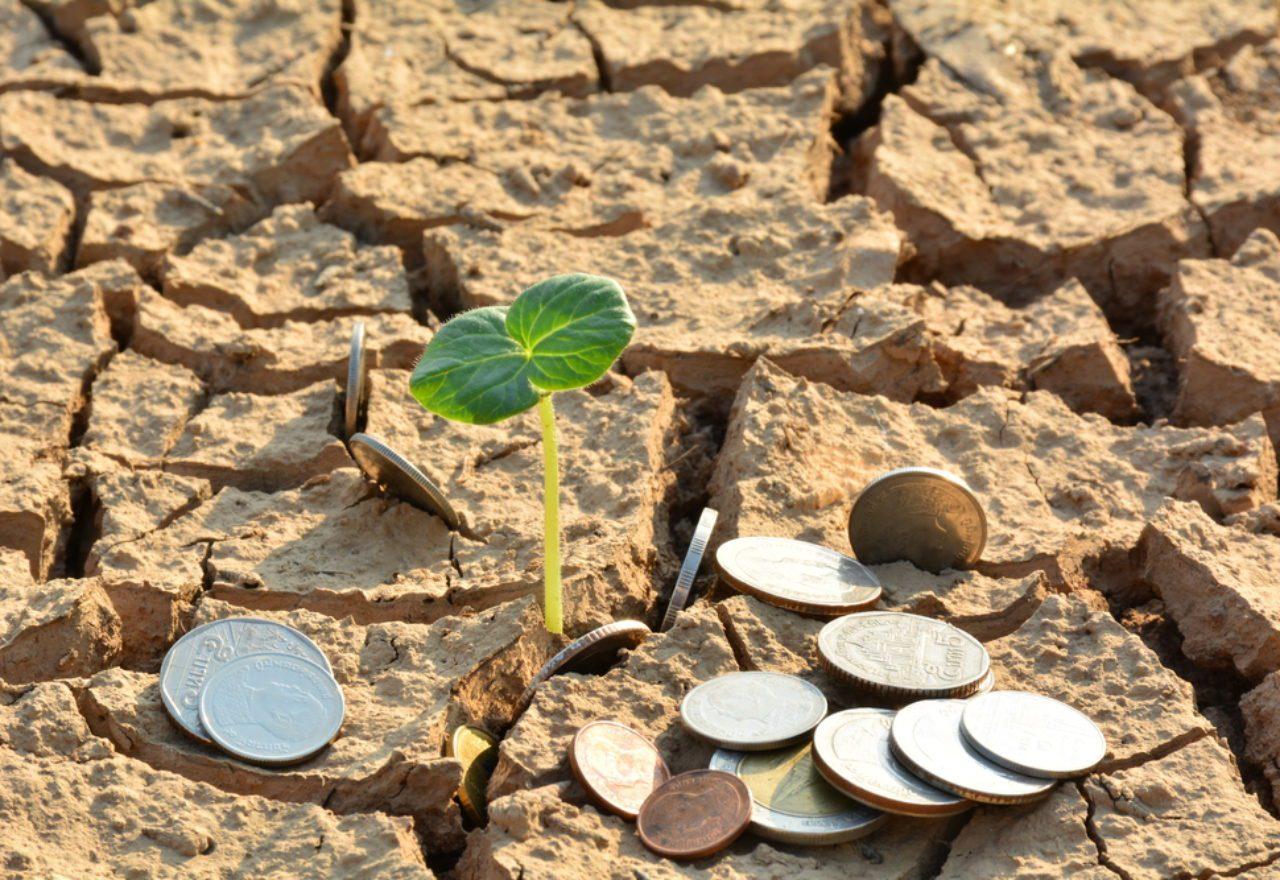 land banking fraud